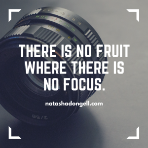 there is no fruit where there is no focus.